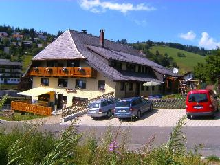 Vacation Apartment in Todtnau - 861 sqft, max. 4 People (# 8762)