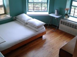 90 dollar/night Large studio room in 2 bed/1 bath, New York City