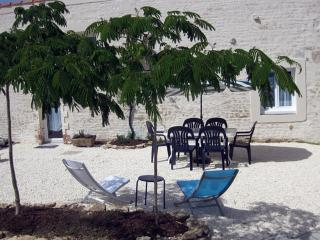 Relaxing under the Albizia Trees in the Courtyard
