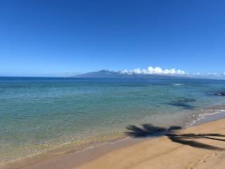 401 Mountain View Studio - OceanFront Resort, Lahaina
