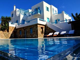 Elegant spacious villa with private pool!, Mykonos (ville)