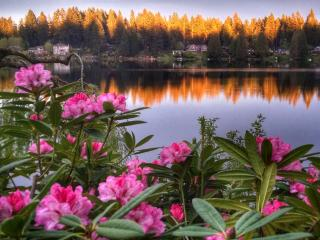 Cottage Lake Bed and Breakfast, Woodinville