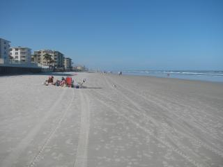 Steps from the Groundfloor Patio to Beach, New Smyrna Beach