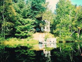 WATERFRONT COTTAGE/GUEST HOUSE N. OTTAWA/GATINEAU, La Peche