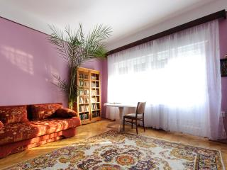 Charming apartment downtown, Brasov
