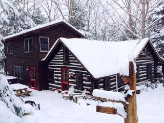 Beautifully Warm & Inviting Log Home Bursting with Character!, Swanton