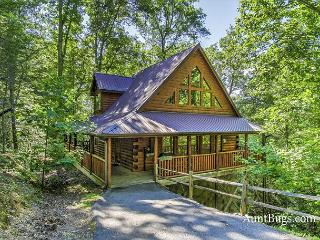 Luxury 2bedroom Resort cabin 5 miles from downtown Gatlinburg & Pigeon Forge, Sevierville