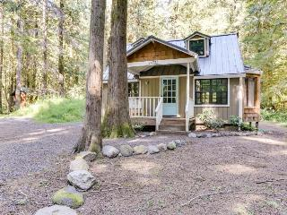 Beautiful chalet with hot tub, fire pit, & mountain views!, Rhododendron