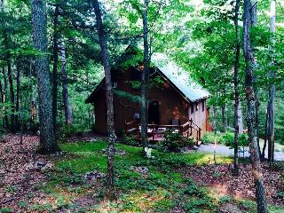 Secluded Chalet Cabin with Hot tub, Berkeley Springs