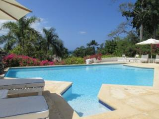 Beautiful 2 Bedroom Villa with Private Pool in Round Hill, Hopewell