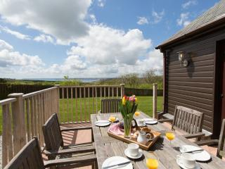Premier Lodge, Trenython Manor located in Par, Cornwall