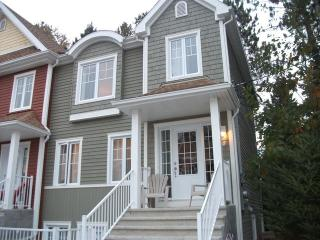 Fabulous 3 Bedroom with pool, hot tub and 50' TV, Mont Tremblant