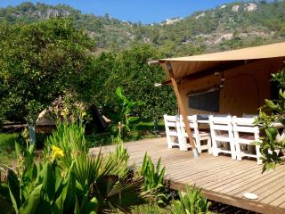 Eco glamping in luxurious Bedouin Tent, Cirali