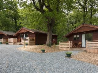 Oak Tree Lodge, Holsworthy