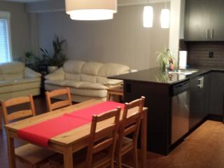 Brand New Furnished Apartment Style Condo, Calgary