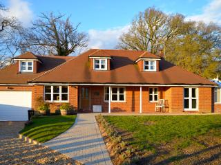Mews Hill - New Forest 5 bedroom Chalet sleeps 11, Fordingbridge