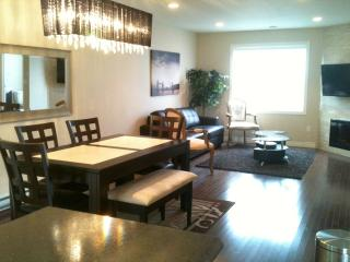 New Furnished Executive in the Heart of Downtown, St. John