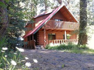 Spacious Lake Shore Ponderosa Cabin Great Location, McCall