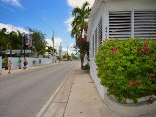 Old Town KW Home Just A Hop-Skip-And-Jump To Duval St., Key West