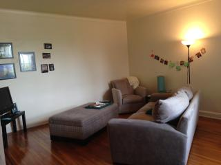 Large 1 bedroom in Brooklyn, 20 min to City