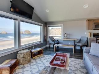 Oceanview, dog friendly, newly remodeled - all the best!, Oceanside