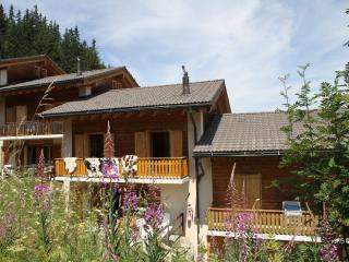 Chalet ski-in/ski-out, Les Collons