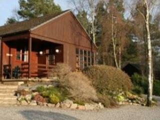 Stylish and spacious lodges in beautiful woodland., Rafford