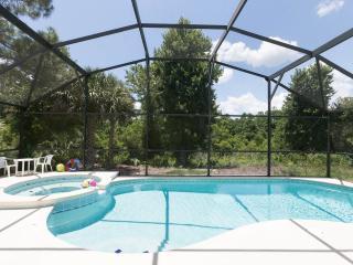 Totally Private Pool Overlooking Natural Woodland, Orlando