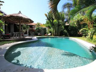 Villa 'Suka' luxury in center Seminyak
