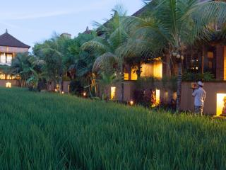 Bebek Tepi Sawah Villas and Spa, Peliatan