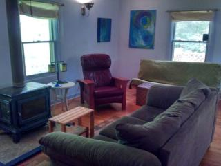 KING ROOM Sleeps 2+ 'BLUE CABIN HOME 3', Asheville