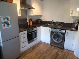 Modern 1 Bedroom Flat with Parking, Inverness
