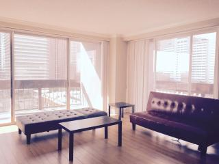 Downtown Houston High Rise Apartment- with Parking, North Houston