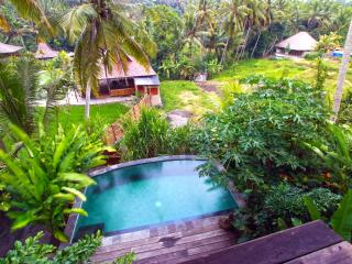 New Villa Facing Rice Fields ubud, Mas