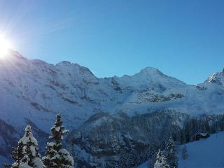 Holiday apartment in the Lauterbrunnen Valley, Stechelberg