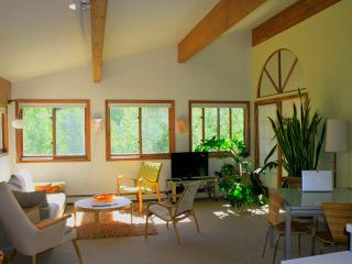 Bright, Spacious, Eco-modern. No car needed!, Aspen
