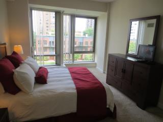 GSA luxury 2BR center of Boston commons