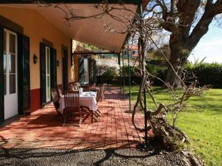 Quinta das Malvas - Parsley Room with Sea View, Funchal