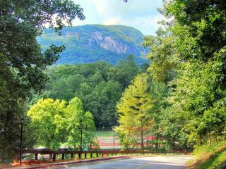Best Mountain Log Home Paradise, all amenities, Lake Lure