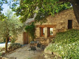 Charming studio in the Provençal Alps with BBQ terrace – ideal for hiking & mountain biking, Cruis
