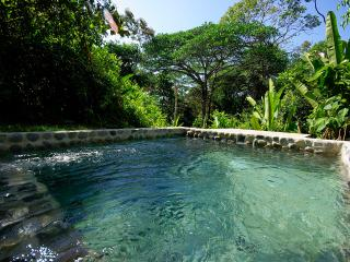 The Jungle Villa-Private Modern Villa with Pool, Dominical