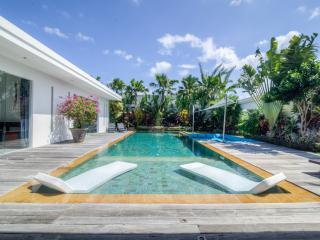 Architect Villa with rice field view, up to 8 pers, Seminyak