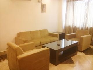 Greater Kailash 1 BHk Apartment, New Delhi