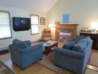Large flat sceen TV in living room - 122 Tracy Lane Brewster Cape Cod New England Vacation Rentals