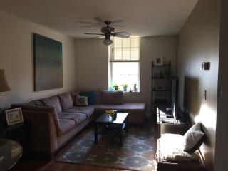 One Bedroom Apt in Old City Philadelphia, Filadelfia
