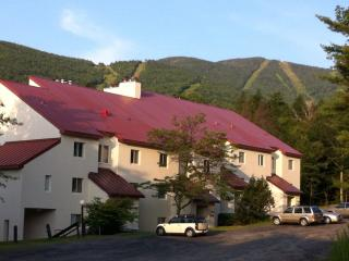 Mountainside Condo at Sugarbush Vt Ski in/Ski out!, Warren