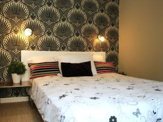 Stylish Central Nice apartment rental with large shared balcony