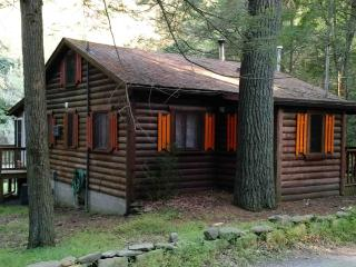 Waterfront Private Bushkill Creek Cabin - Sleeps 6, East Stroudsburg