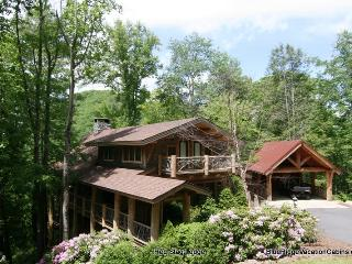 Red Stag Lodge*Eagles Nest Luxury Home*4 Levels, Banner Elk