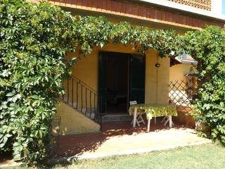 Your Summer in Tuscany!, Montecatini Val di Cecina